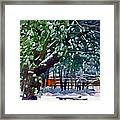 Wintry  Snowy Trees Framed Print