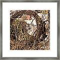 Wire Roll Framed Print