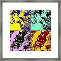 Wise Old Pop Art Framed Print by Heather Watson