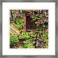 Wisteria On A Home In Zellenberg France 3 Framed Print