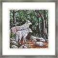 Wolves In South Dakota Framed Print