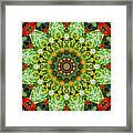 Wreath Kaleidoscope Framed Print