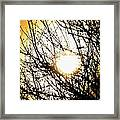 Yellow Dreamscape Framed Print