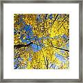 Yellow In The Sky Framed Print