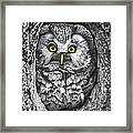 Yelloweyes - The Owl Edition Framed Print