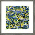 Yellowtail Frenzy In0023 Framed Print