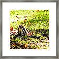 You Talking To Me? Framed Print