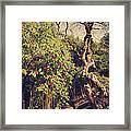 You'll Never Be Alone Framed Print by Laurie Search