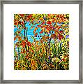 Young And Brash 2 Framed Print