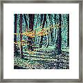 Youngster Framed Print by Hannes Cmarits