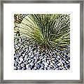 Zen Landscape Framed Print