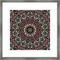 Zentangle No. 7 Kaleidoscope Framed Print