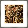 Birth Of Sin Framed Print