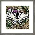 Love Is Blind Framed Print by Eric Kempson