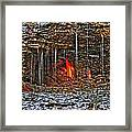 0004 Natural Elements Framed Print