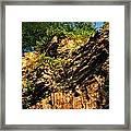 023 Niagara Gorge Trail Series  Framed Print