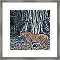 Alert Cheetah Framed Print by Darcy Michaelchuk