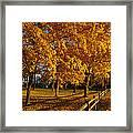 Autumn Fence Framed Print