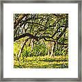 Bent Trees Framed Print