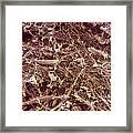 Dry Rot Fungus, Sem Framed Print by Dr Jeremy Burgess