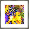 Grape Vine Framed Print