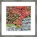 Hot Autumn Leaves 02 Framed Print