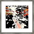 Koi Pool Framed Print