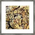 Natural Abstract 44 Framed Print