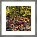 Scattered About Framed Print