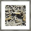 Selenite Crystals On A Dried Lake Bed Framed Print