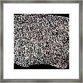 Syenite Igneous Rock Framed Print