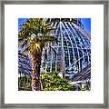 Tacoma Botanical Conservatory Framed Print
