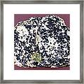 Uraninite In Calcite Framed Print