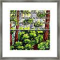 Where The Path Leads Framed Print