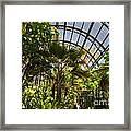 Balboa Park San Diego Framed Print
