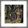 Autumn Landscape Framed Print by Vladimir Kholostykh