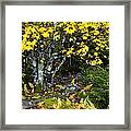 Fall Color Highland Scenic Highway Framed Print