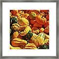 Pumpkins And Gourds Framed Print
