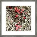 Red Blood Cells, Sem Framed Print