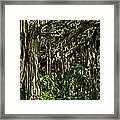 20120915-dsc09877 Framed Print