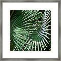 20120915-dsc09902 Framed Print