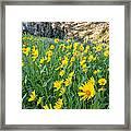 Wasatch Mountains Utah Framed Print