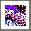 Cherry Blossom Art Framed Print