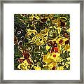 Untitled Framed Print by Daniele Smith