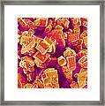 Sugar Crystals, Sem Framed Print
