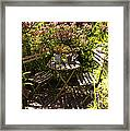 542 Cf Peaceful Garden Framed Print