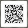 Methicillin-resistant Staphylococcus Framed Print