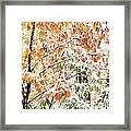 Autumn Snow Monongahela National Forest Framed Print