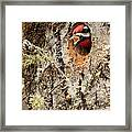 A Mouthful..excavation Framed Print
