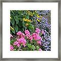 A Multitude Of Colors Framed Print